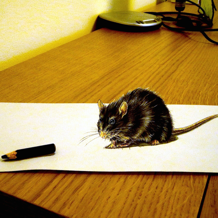 3D anamorphic small drawings on paper