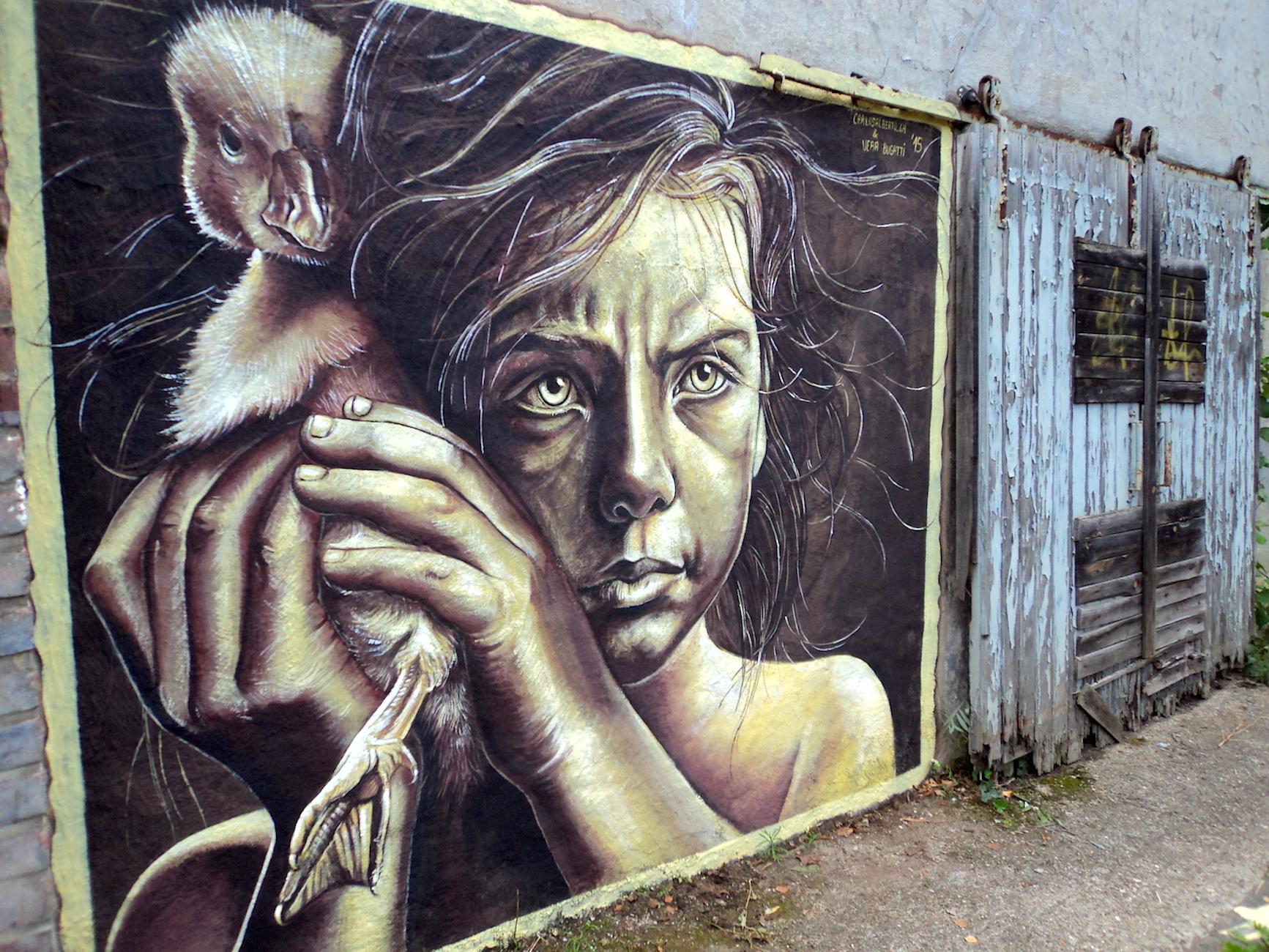 verabugatti streetart murals walls arteurbana illusioniottiche 3Dstreetart ducks saveanimals protection krefeldartgallery